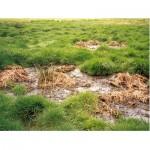 Типы грунтовых вод